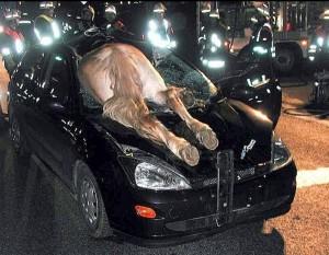 accidentes de tráfico en España