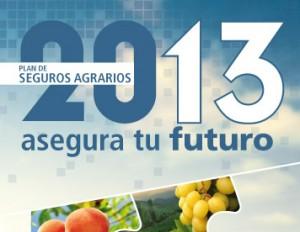 Seguros Agrarios 2013
